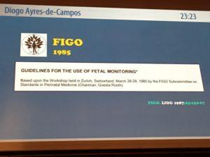 FIGO IMG_0095 - copie